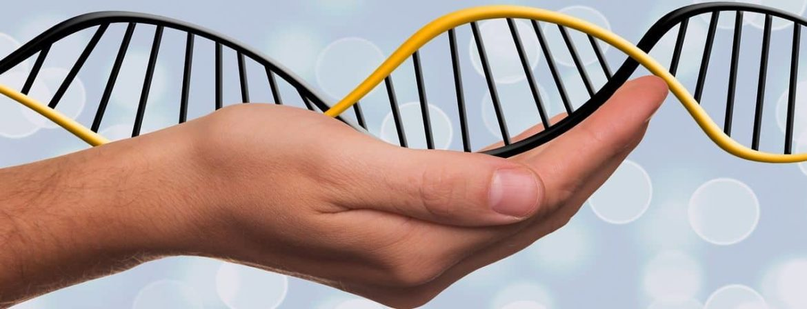 How To Choose The Best Direct To Consumer Dna Kit ⋆ Your