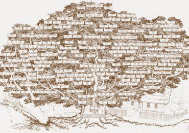 Graficzne Drzewo Genealogiczne